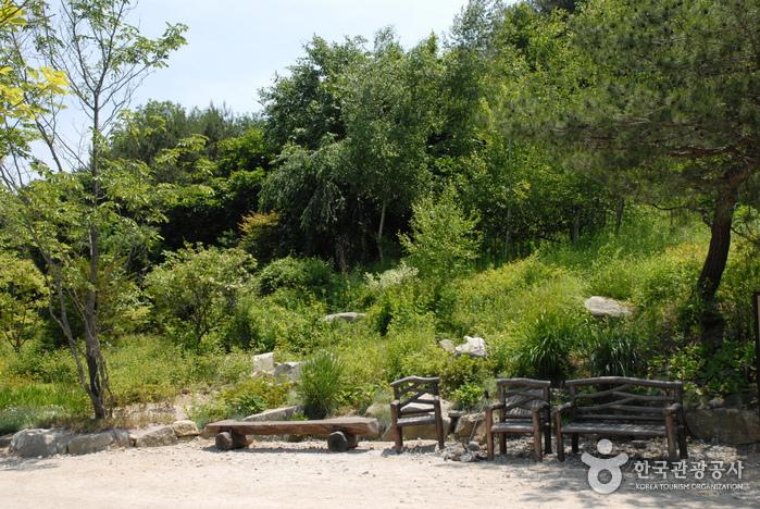 Ботанический сад Пхёнган (평강식물원)