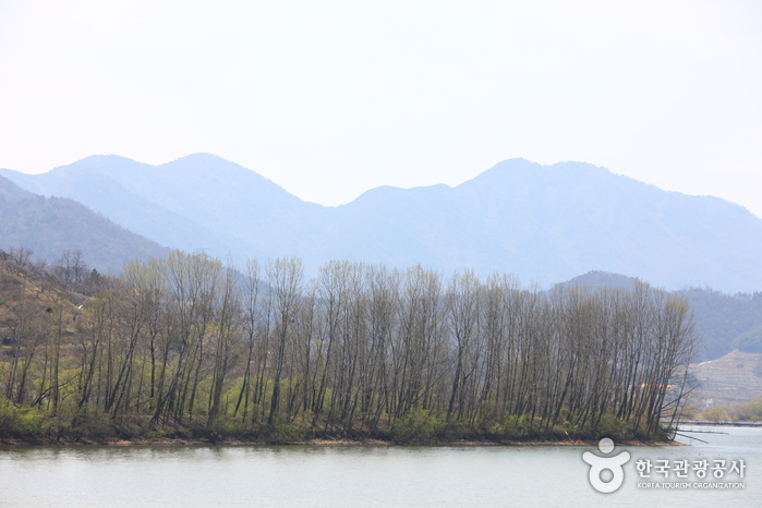 Junam Reservoir (Habitat for migratory birds) (주남저수지 (철새도래지))
