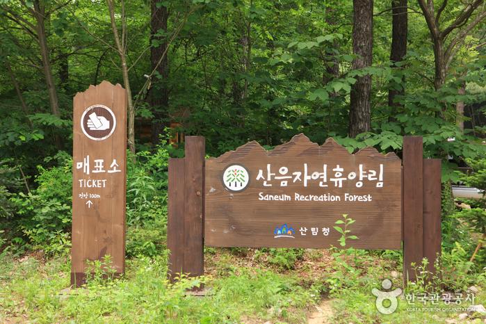 国立山陰自然休養林(국립 산음자연휴양림)