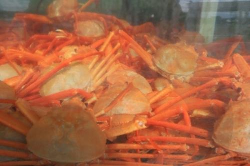 Trash: Uljin Snow Crab Festival  (울진대게와 붉은대게 축제)