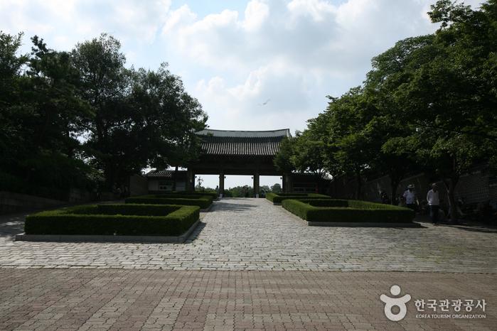 Daegu Dalseong Park (대구 달성공원)