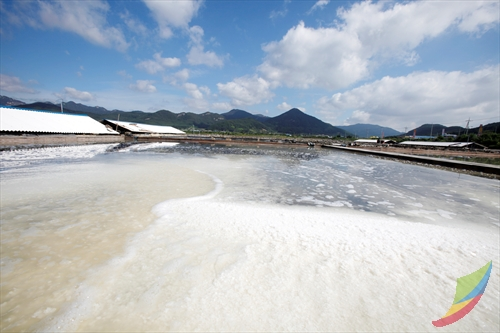 Gomso Salt Field (곰소...