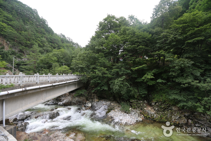 Micheongol Valley (미...