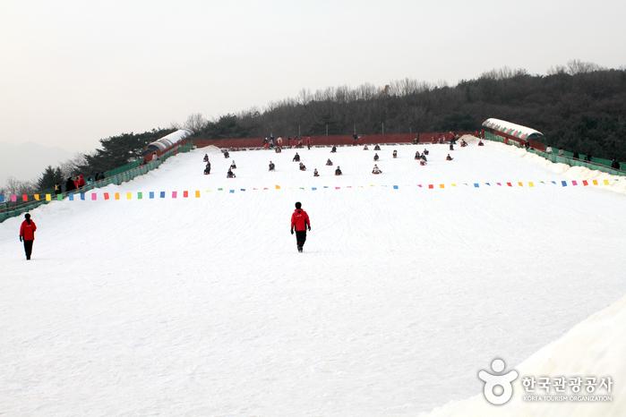 Seoul Land Sledding Hills (서울랜드 눈썰매장)
