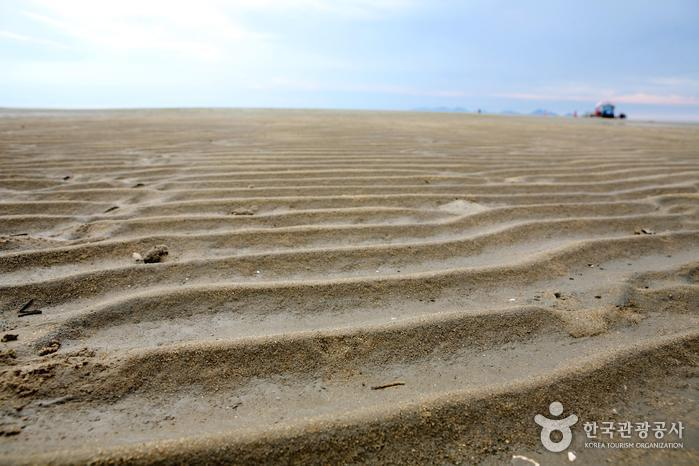 Plage de Dongho (동호해수욕장)