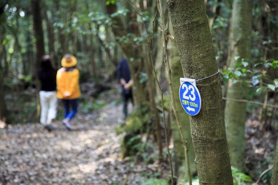 동백동산에서는 번호판을 활용하면 길 찾기가 수월하다.