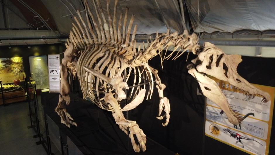 慶南固城恐竜世界エキスポ(경남고성 공룡세계엑스포)