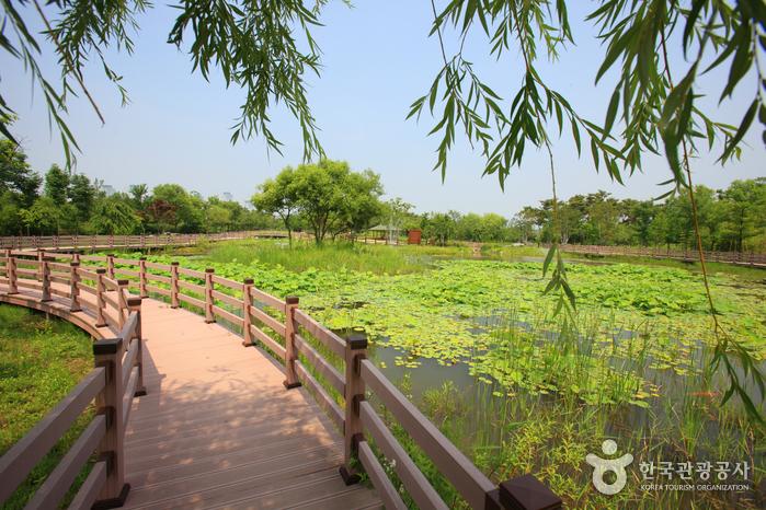 전국 최대의 도심 속 인공수목원