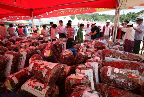 Goesan Red Pepper Festival (괴산고추축제)