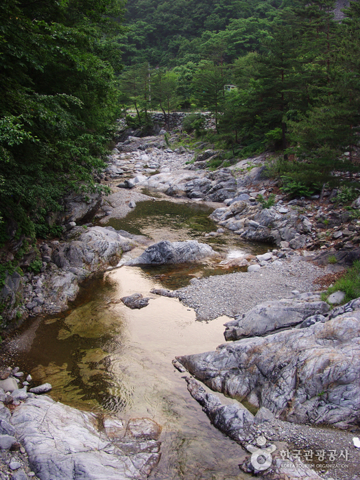 Micheongol Valley (미천골계곡)