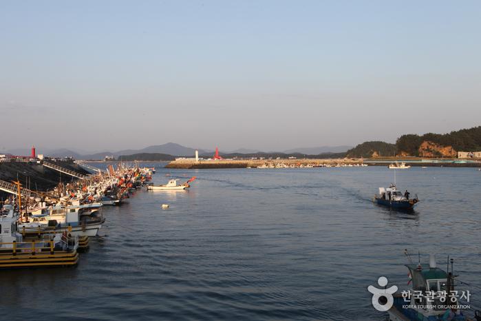 홍원항 모습