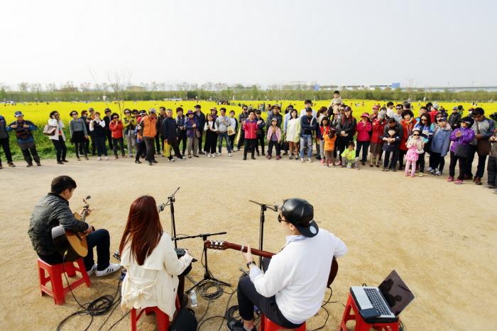 釜山洛東江菜の花祭り(부산 낙동강 유채꽃 축제)