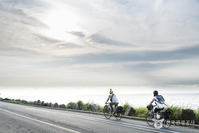 [국내여행 버킷리스트 3탄] 올 여름엔 제주도 자전거 여행이다! 사진