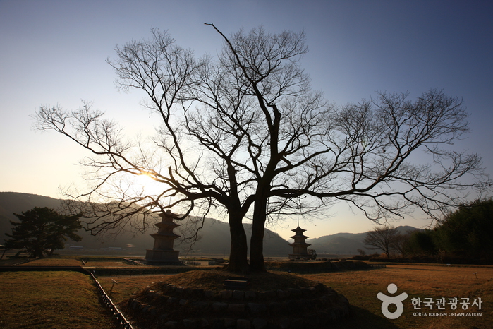 Gameunsaji (Gameunsa Temple Site) (경주 감은사지)