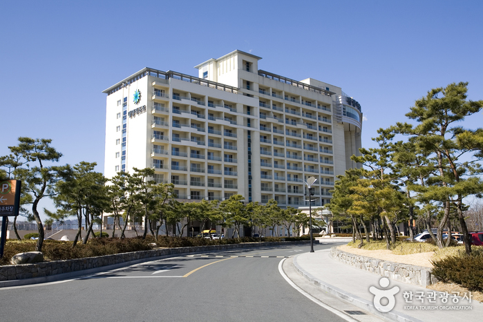 Daemyung Resort - Gyeongju (대명리조트 경주)
