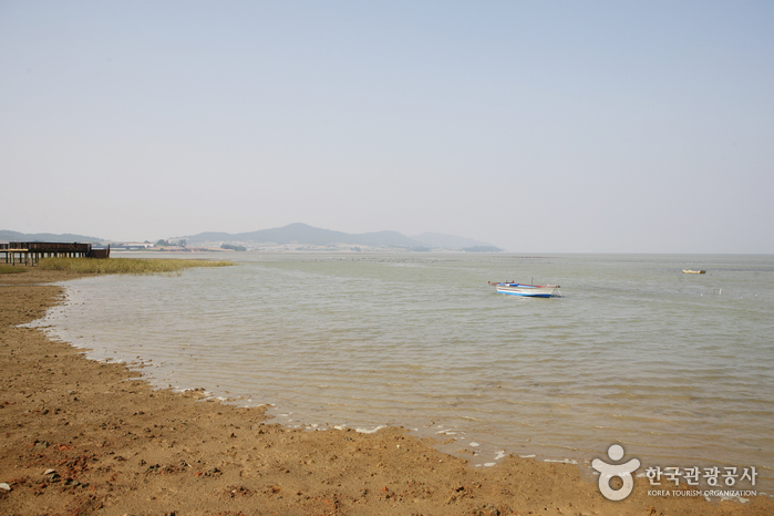Muan Tidal Wetland Research (무안생태갯벌센터)