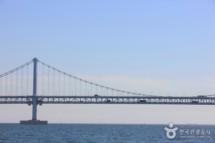 釜山廣安大橋(부산 광안대교)