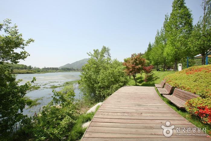 Seodong-Park (서동공원)