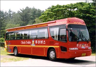 Jeju Trolley Limousine Tour (제주 트롤리 버스(Trolley Bus))