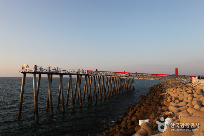 서천 홍원항 전경.