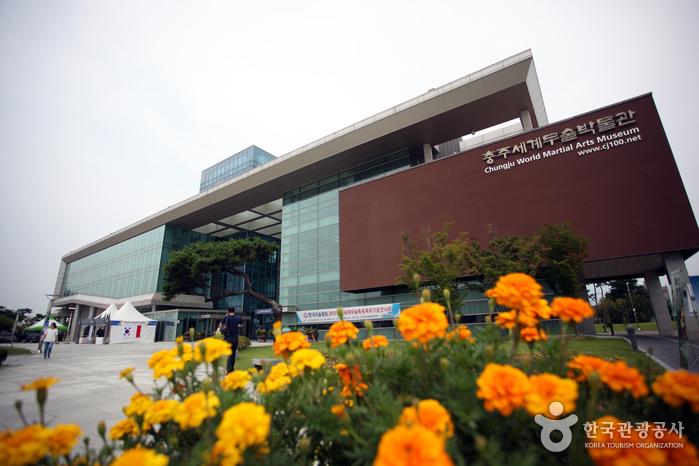 忠州世界武術博物館(충주세계무술박물관)