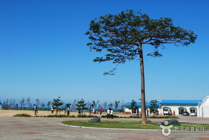 꽃지해안공원