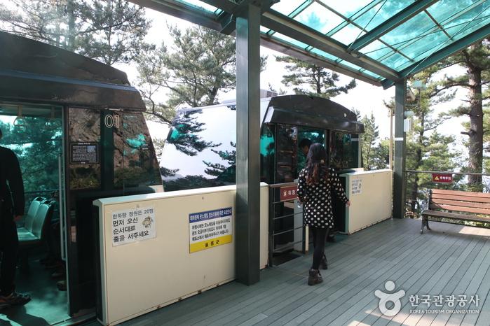 Taehahyangmok Tourist Monorail (태하향목 관광모노레일)