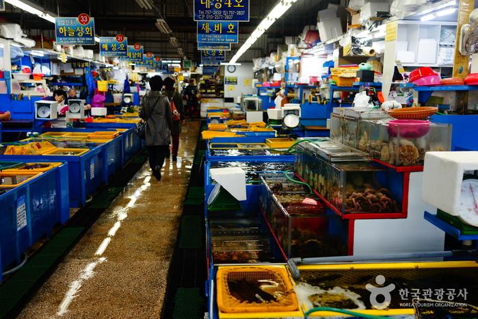 Millak Hoe (raw fish) Center (민락어민활어직판장(부산 민락회센타))