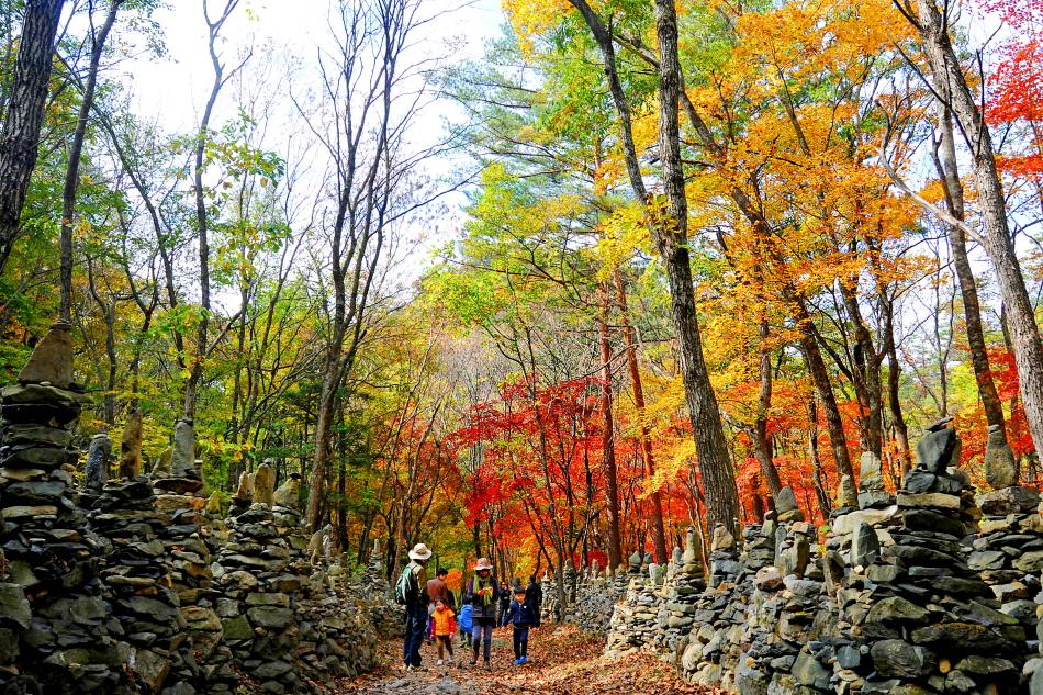 가을을 만끽하며 노추산 모정탑길을 산책하는 가족 _사진 제공 강릉시청