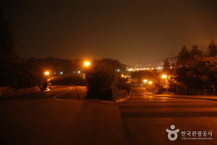 Haneul Park (하늘공원)