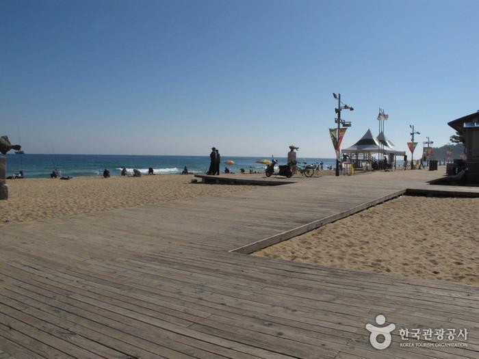 속초해변 사진9