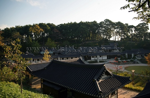 삼양대관령목장
