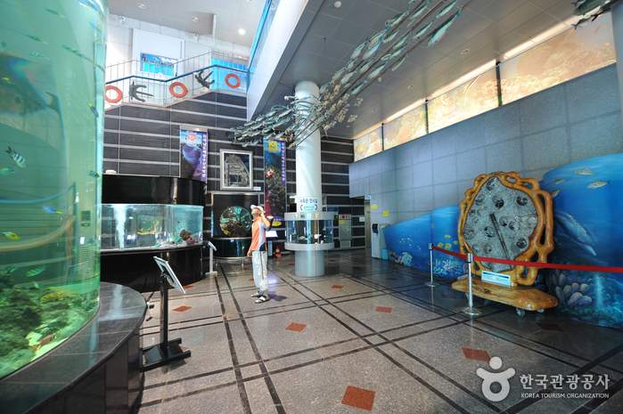 Maritime & Fisheries Science Museum (전라남도해양수산과학관)