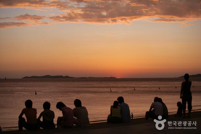 大川海水浴場(대천해수욕장)