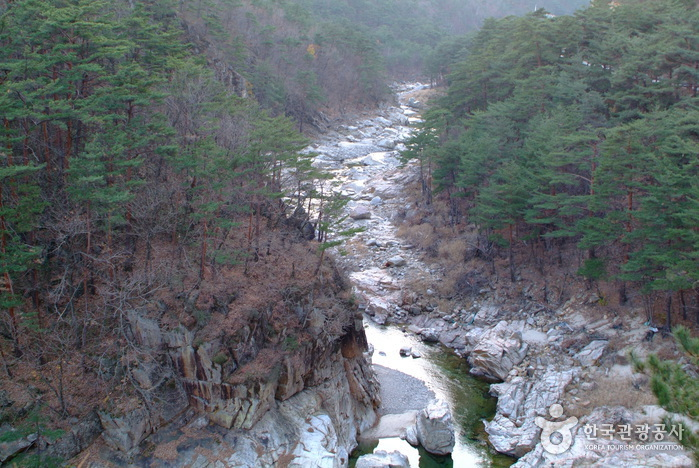 Buryeongsa Valley (불영사계곡)