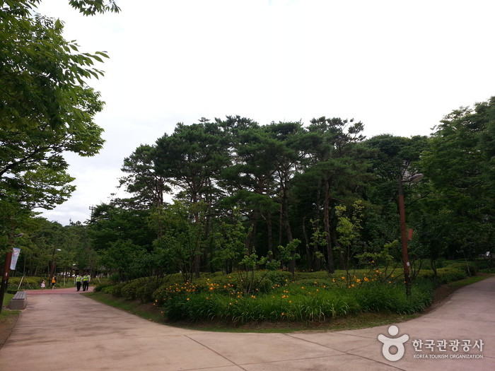 Parc Jangchungdan (장충단 공원)