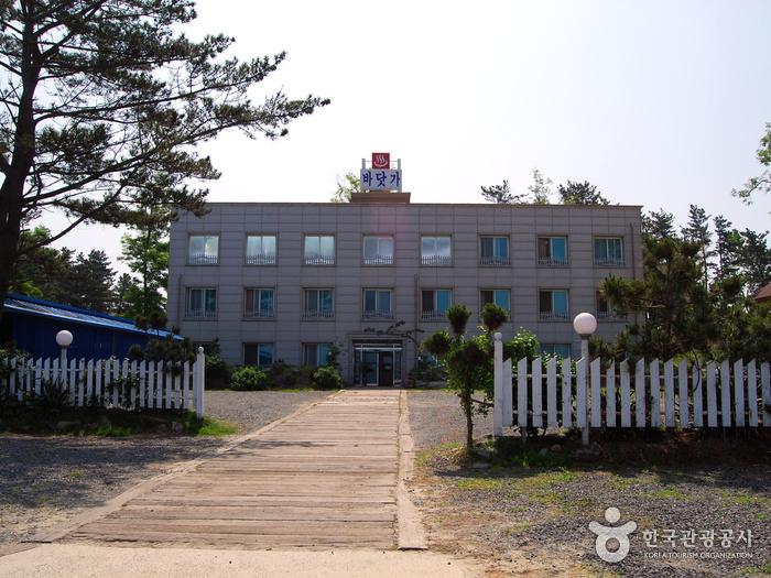 춘장대바닷가모텔
