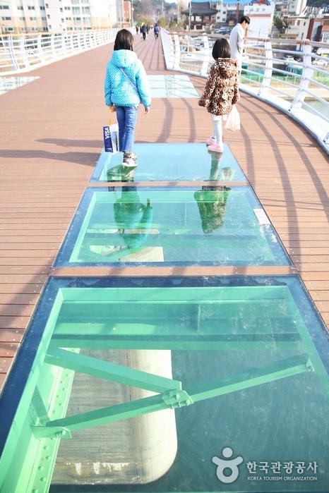 월화교 가운데에 투명 강화유리가 설치되어 있다.