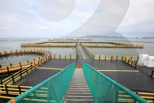 正南津海洋釣り公園(정남진해양낚시공원)