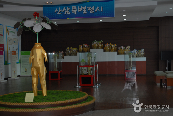 Geumsan Ginseng Museum ()