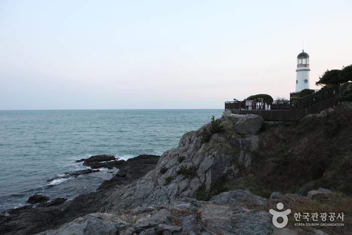 Dongbaekseom Island ...