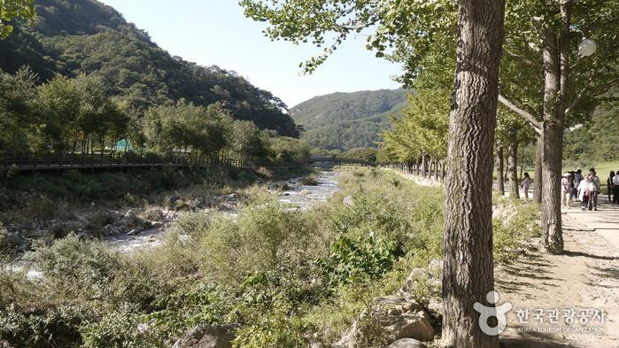 Mungyeongsaejae Provincial Park (문경새재도립공원)