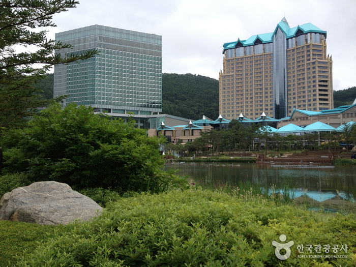 Casino de Kangwon Land (강원랜드 카지노)