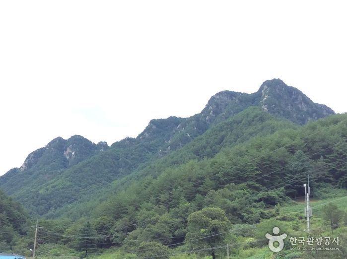 선바위산(영월)