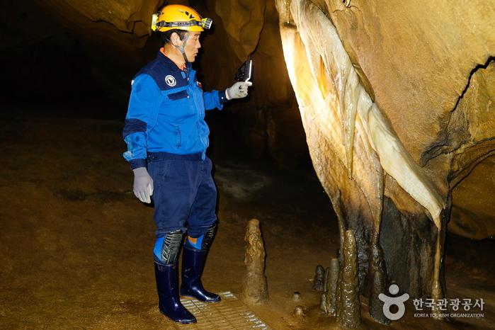 백룡동굴 생태체험학습장