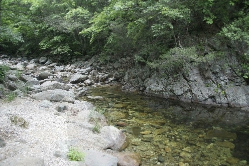 Yongdae National Recreation Forest (국립 용대자연휴양림)