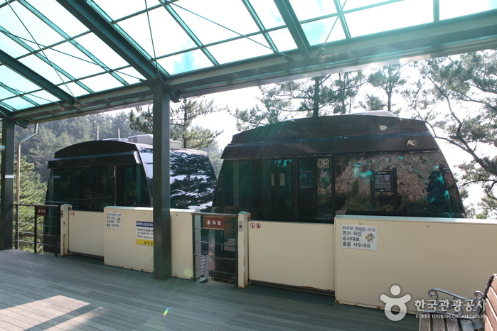 Taehahyangmok Monorail (태하향목 관광모노레일)