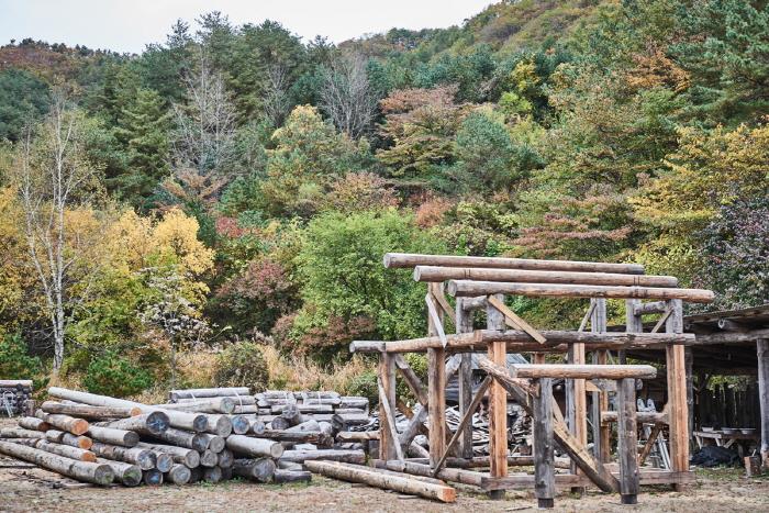 한국통나무학교