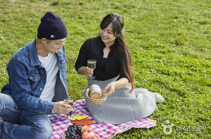 잔디에 앉아서 피크닉을 즐기고 있다.
