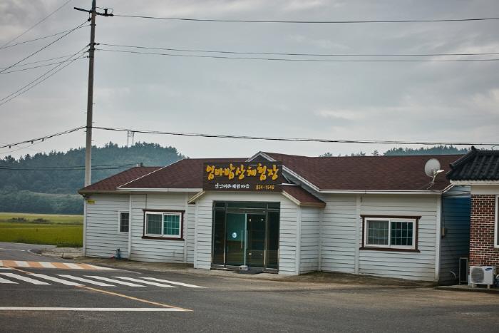 고흥 신기거북이마을
